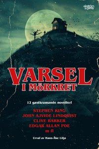 bokomslag Varsel i mörkret