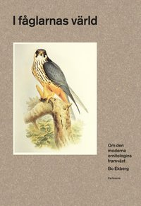 bokomslag I fåglarnas värld : om den moderna ornitologins framväxt