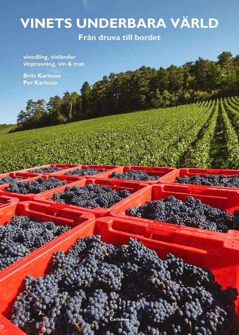 Vinets underbara värld 1