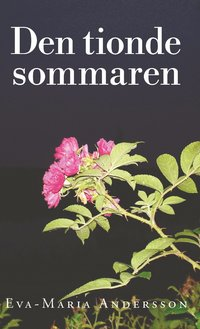 bokomslag Den tioende sommaren
