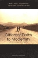 bokomslag Different paths to modernity : a nordic and spanish perspective