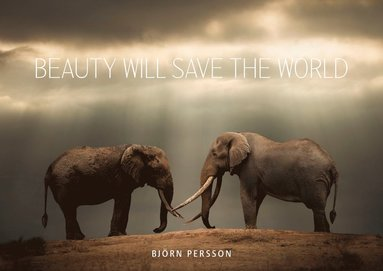 bokomslag Beauty will save the world