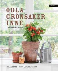 bokomslag Odla grönsaker inne : från frö till skörd