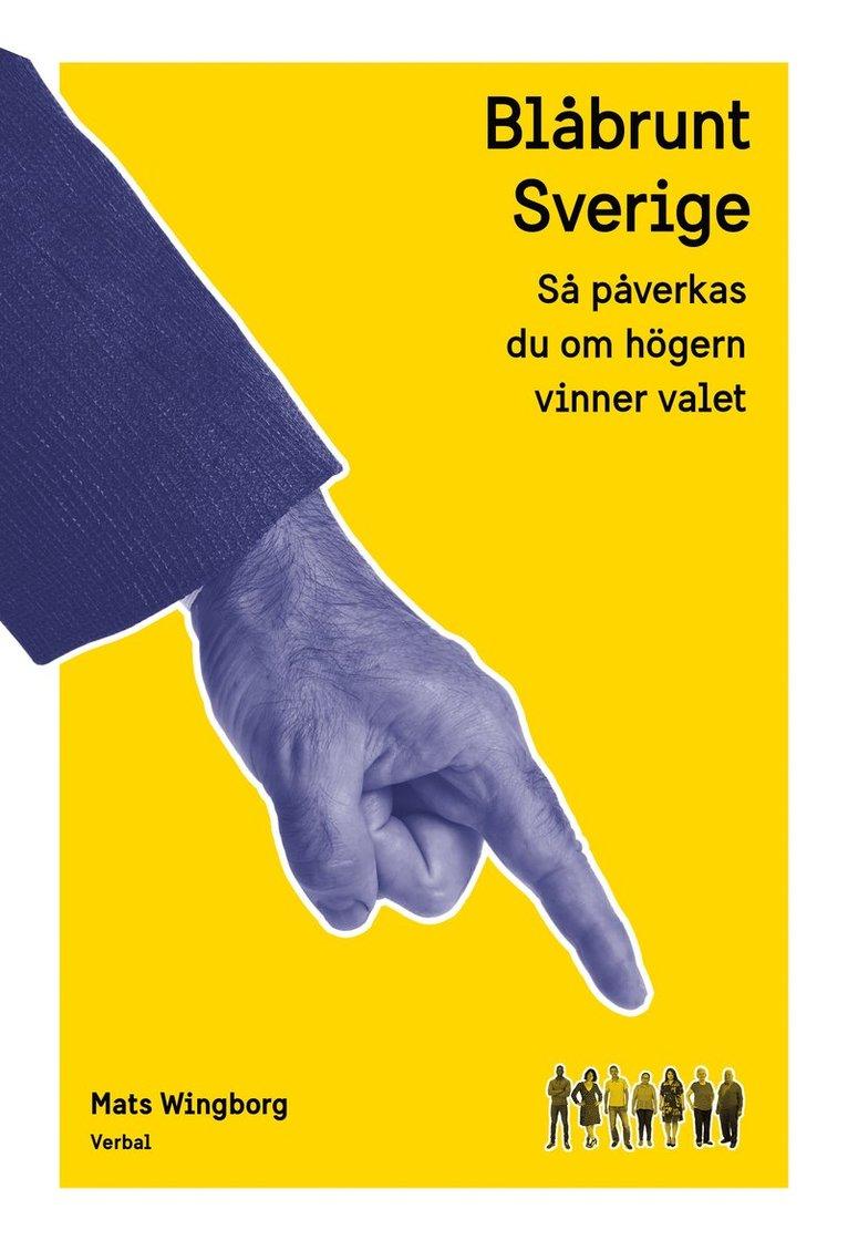 Blåbrunt Sverige : Så påverkas du om högern vinner valet 1