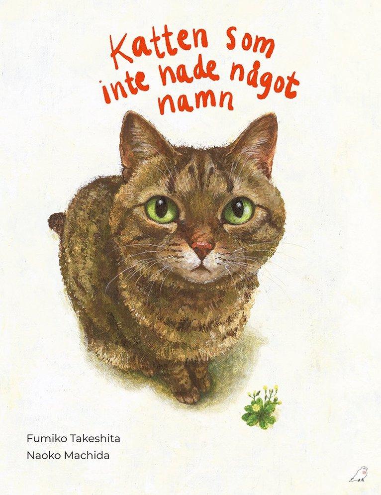 Katten som inte hade något namn 1