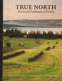 bokomslag True North : the grand landscapes of Swede