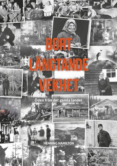 bokomslag Bort Längtande Vekhet : Öden från det gamla landet