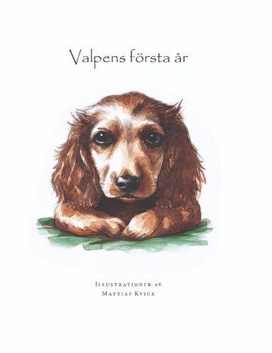 bokomslag Valpens första år