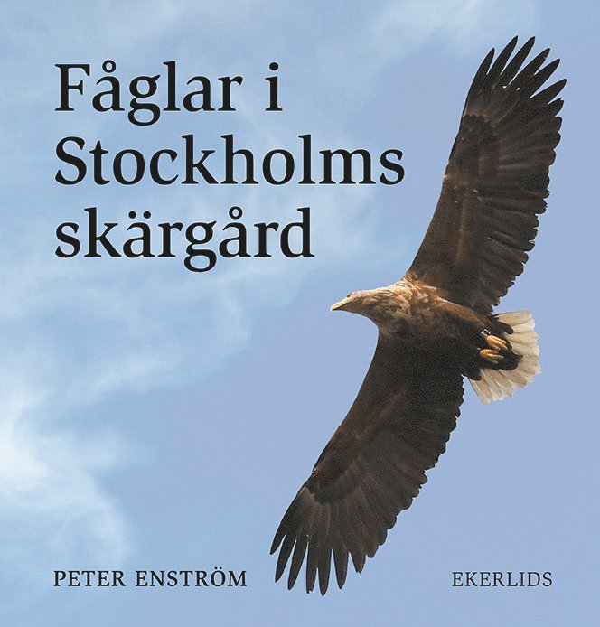 Fåglar i Stockholms skärgård 1