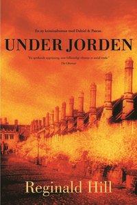 bokomslag Under jorden