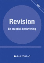 bokomslag Revision : en praktisk beskrivning