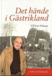 bokomslag Det hände i Gästrikland