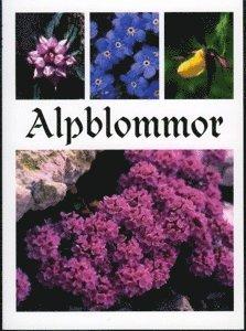 bokomslag Alpblommor