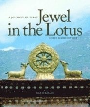 bokomslag Jewel in the Lotus : a journey in Tibet