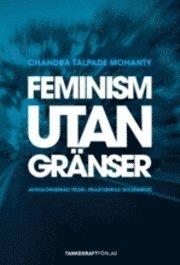 bokomslag Feminism utan gränser : avkoloniserad teori, praktiserad solidaritet