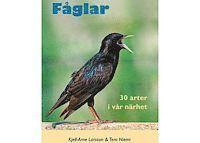 bokomslag Fåglar : 30 arter i vår närhet