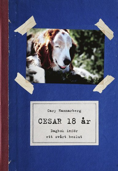 bokomslag Cesar 18 år : dagbok inför ett svårt beslut