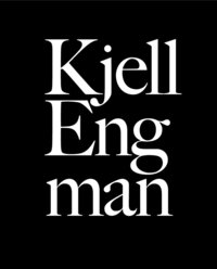 bokomslag Kjell Engman : i glasets gränsland = borderlands of glass