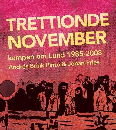 bokomslag Trettionde november : kampen om Lund 1985-2008