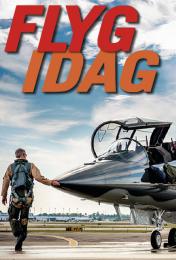 bokomslag Flyg idag : flygets årsbok 2017