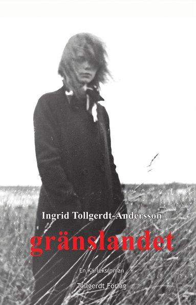 bokomslag Gränslandet : en kärleksroman