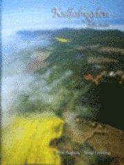 bokomslag Kullabygden från ovan
