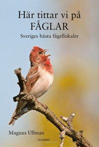bokomslag Här tittar vi på fåglar : Sveriges bästa fågellokaler