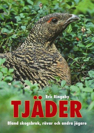 bokomslag Tjäder : bland skogsbruk, rävar och andra jägare