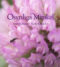 bokomslag Osynliga mirakel