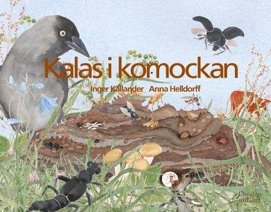 bokomslag Kalas i komockan