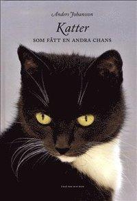 bokomslag Katter som fått en andra chans