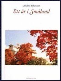 bokomslag Ett år i Småland