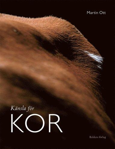 bokomslag Känsla för kor : ett nytt partnerskap tar sin början