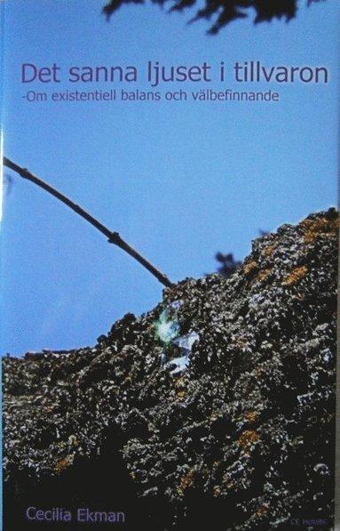 bokomslag Det sanna ljuset i tillvaron : om existentiell balans och välbefinnande