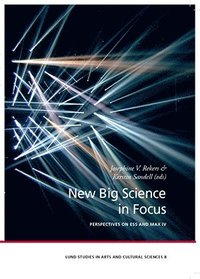 bokomslag New Big Science in Focus