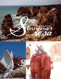 Sinnenas resa ; A journey through the senses