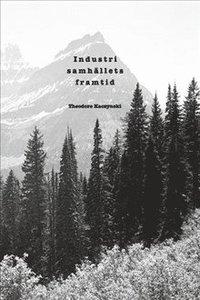 bokomslag Industrisamhällets framtid