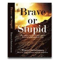 bokomslag Brave or Stupid