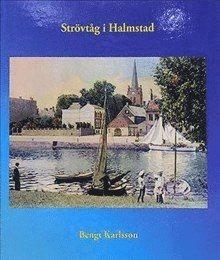 bokomslag Strövtåg i Halmstad