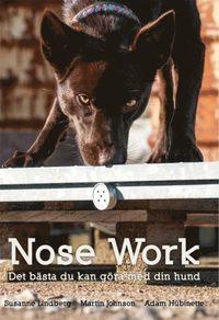 bokomslag Nose Work-Det bästa du kan göra med din hund