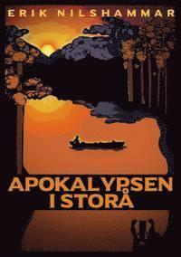bokomslag Apokalypsen i Storå