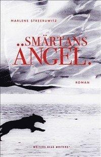 bokomslag Smärtans ängel