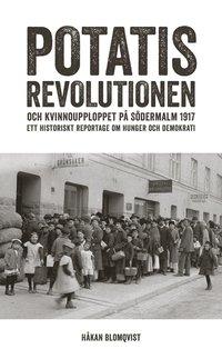 bokomslag Potatisrevolutionen och kvinnoupploppet på Södermalm 1917 : ett historiskt reportage om hunger och demokrati