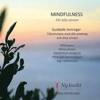 bokomslag Mindfulness : för alla sinnen