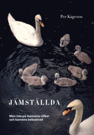 bokomslag Jämställda : men inte på mannens villkor och barnens bekostnad