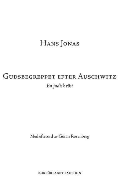 bokomslag Gudsbegreppet efter Auschwitz