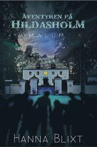 bokomslag Äventyren på Hildasholm - Malum