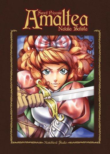 bokomslag Sword Princess Amaltea