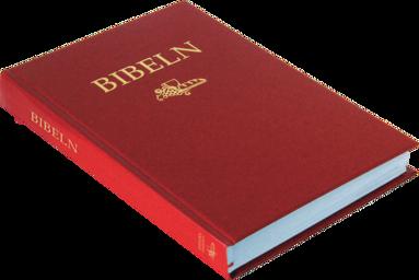 bokomslag Svenska Folkbibeln 2015 Slimline, röd i hårdpärm