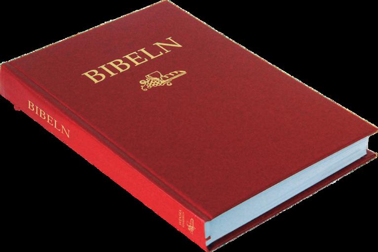 Svenska Folkbibeln 2015 Slimline, röd i hårdpärm 1